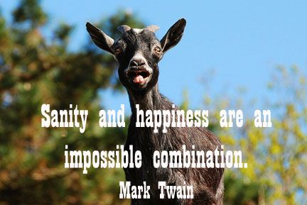 goats and inspirational quotes | GOAT QUOTES image quotes at ...
