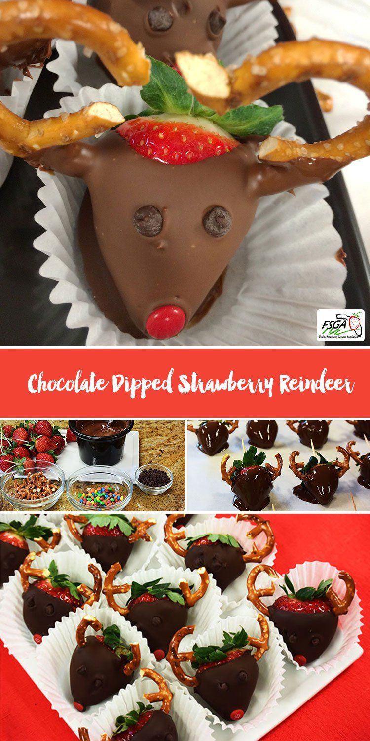 Chocolate dipped strawberry reindeer food sweet treats chocolate dipped strawberry reindeer forumfinder Choice Image