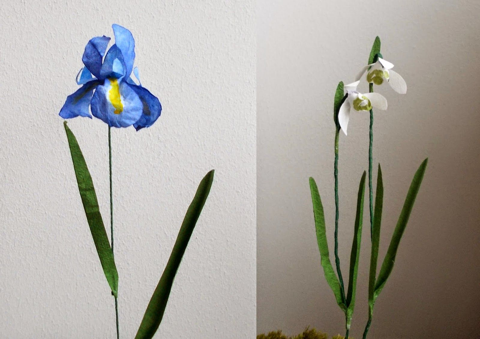 Paper flower patterns: coffee filter iris and snowdrop