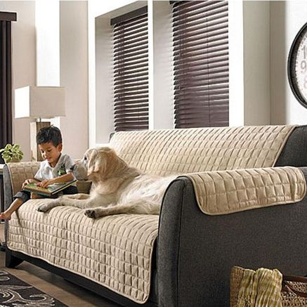 Fantastic Whole Home Md Pet Protector Cover For Sofas Sears Sears Ibusinesslaw Wood Chair Design Ideas Ibusinesslaworg