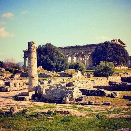 Paestum (particolare)