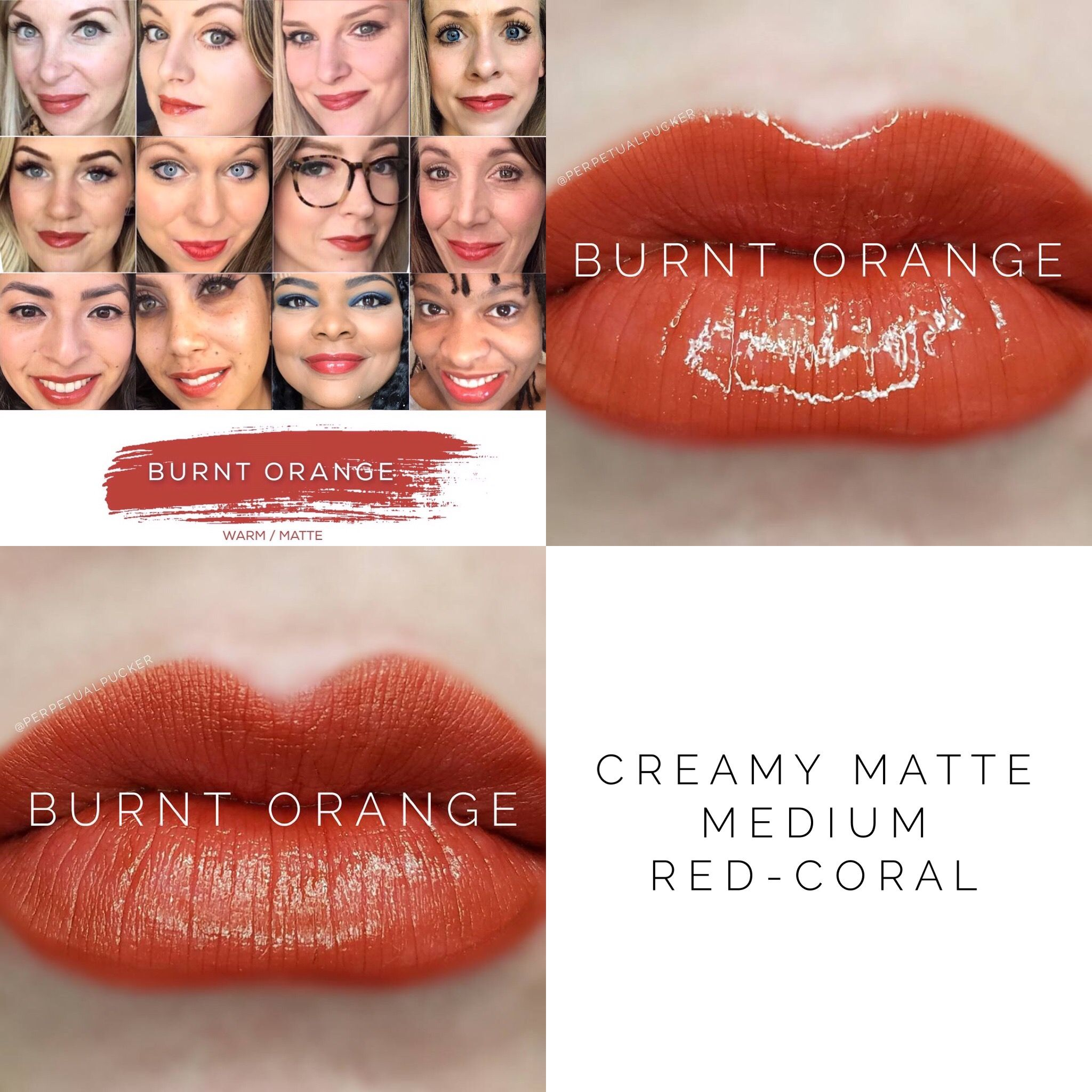 burnt orange lipsense lipsense colors pinterest lip colors