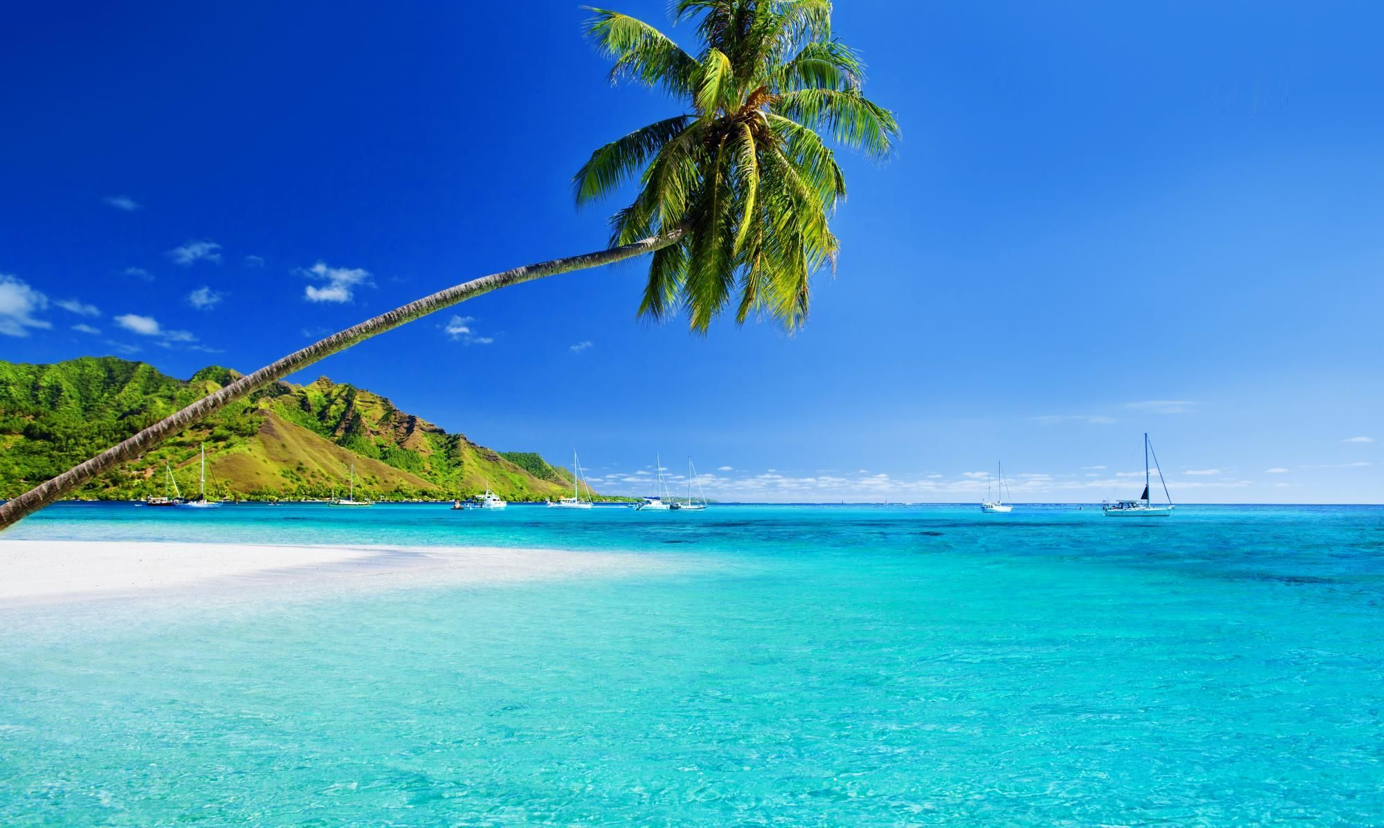 Explore the beautiful Caribbean islands with