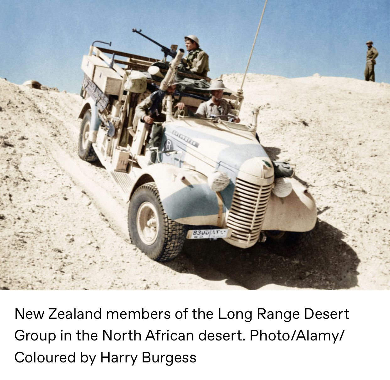 Pin by Johnno on New Zealand Army New zealand, Nz