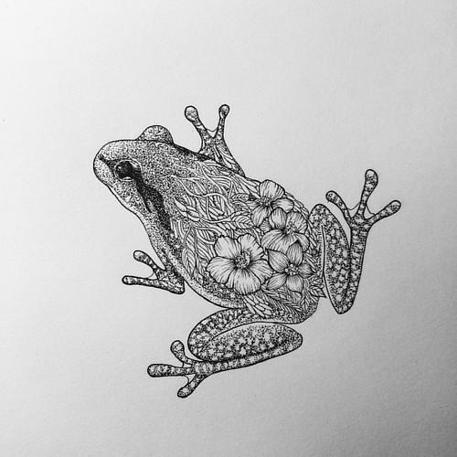 Flower frog #art #frog #ink #instaart #instaink #instadraw…   Flickr