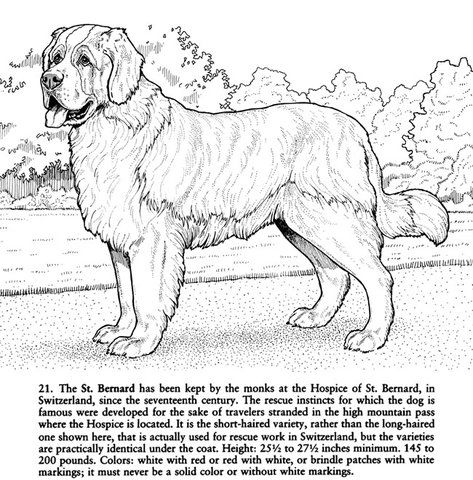 Bree Youngs uploaded this image to \'coloring pages/nature\'. See the ...