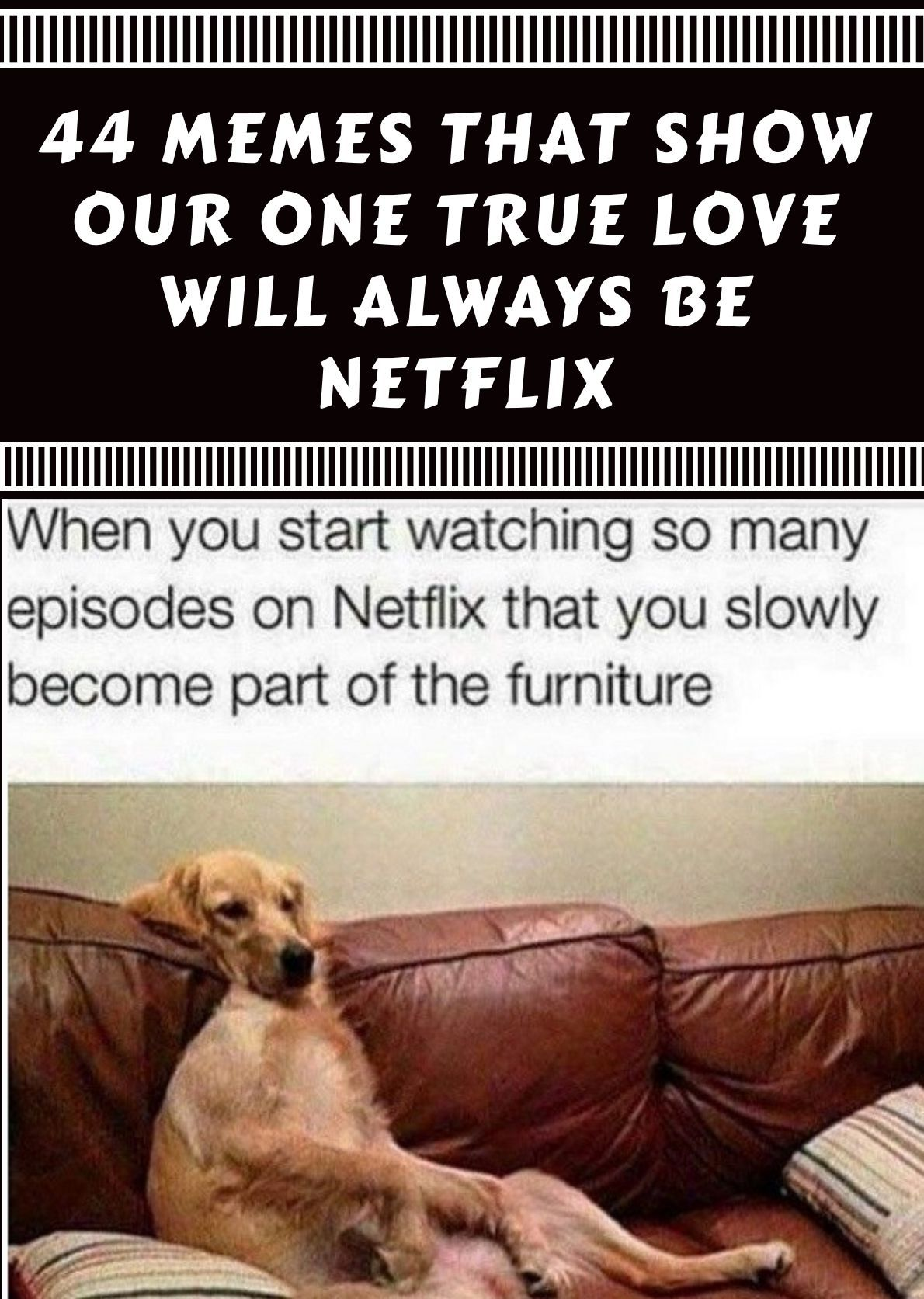 44 Memes That Show Our One True Love Will Always Be Netflix Wtf Lol Haha Omg Intrest Wtf Lol Haha Omg Intrest Funny T Netflix Tv Memes Netflix Humor
