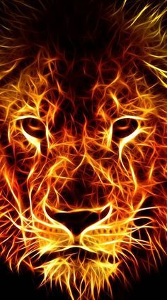 Lion Ringtones And Wallpapers - Free By Zedge™