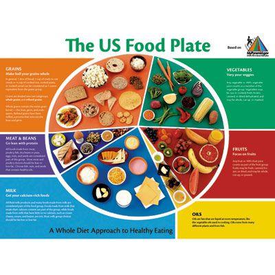 Myplate Worksheet Printable Food Pyramid Plate My Food Plate