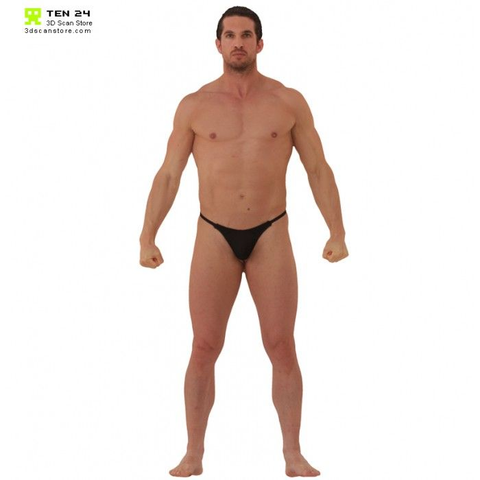 Colour Male Anatomy Bundle Anatomy Color Body Scanning