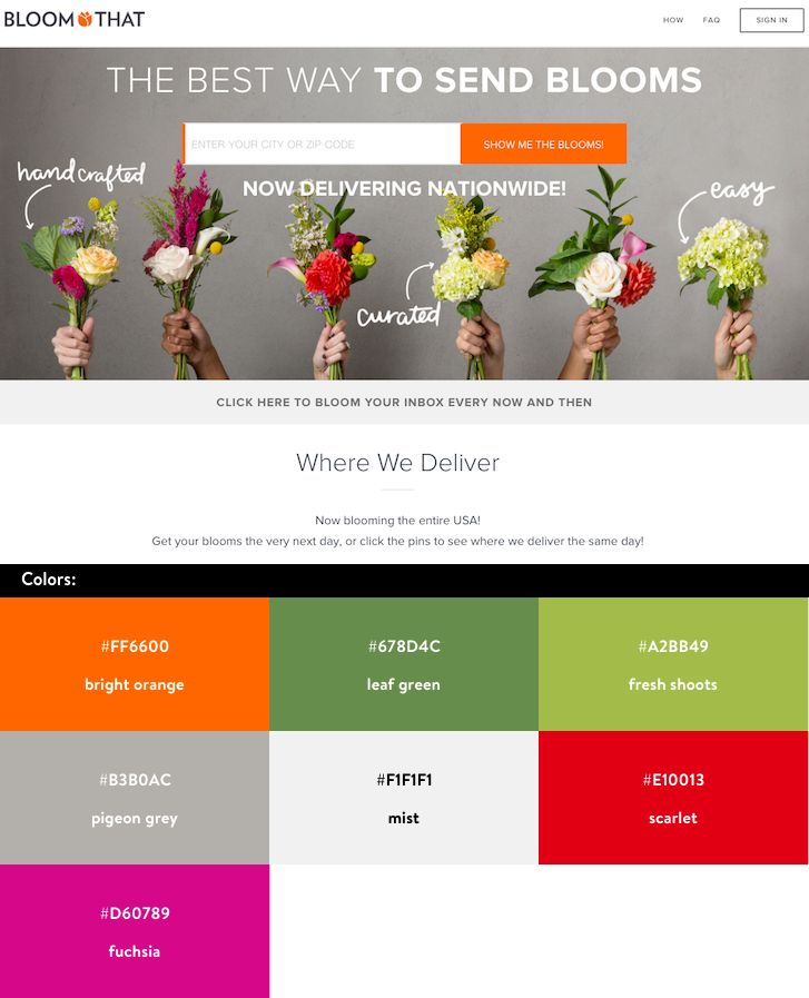 Website Color Schemes Bloom That Bold And Bright