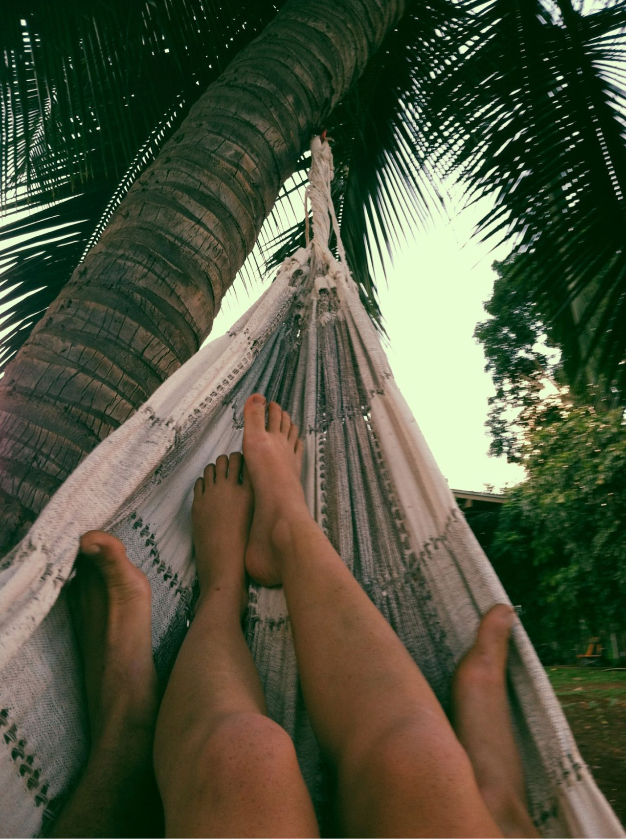Hammock life is the life for us  RoamFree  Couple beach