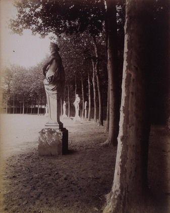Eugène Atget. Versailles, Parc. 1902