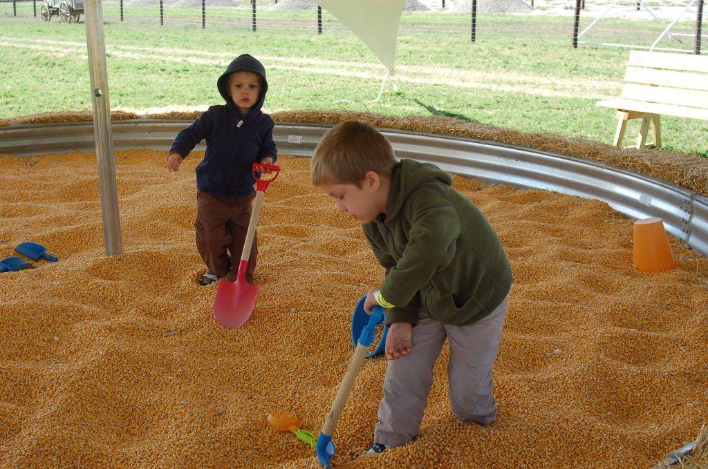 Visiting Scarecrow Farm near Sioux City, Iowa Pumpkin