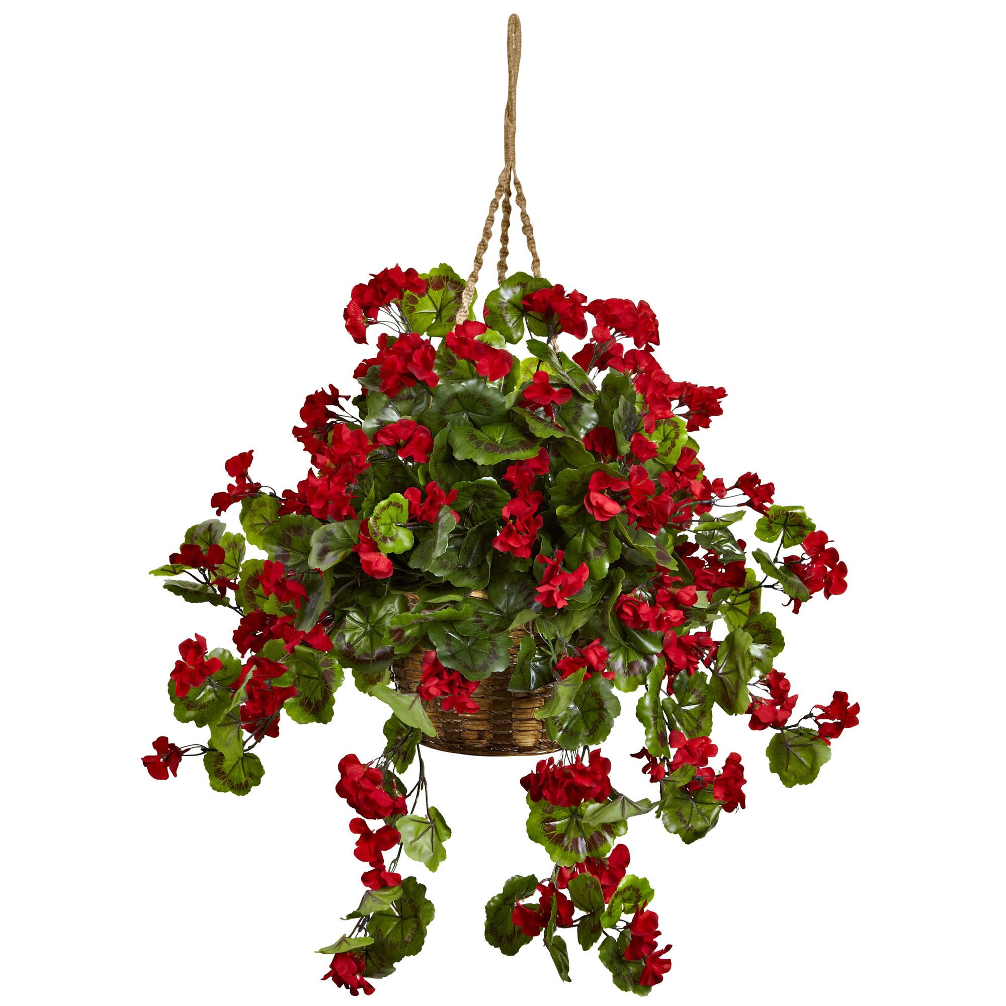28 Inch Red Outdoor Geranium In Hanging Basket Limited Uv