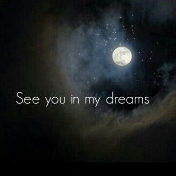 Ill See You In My Dreams The Way I See It My Dreams Quotes