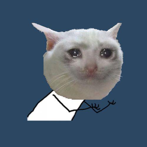 Cat Meme Templates Imgflip Cat Memes Cat Mem Meme Template