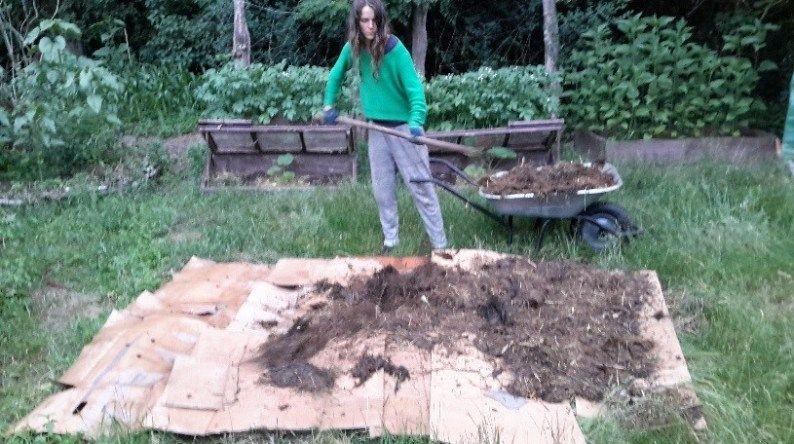Das Ultimative Gartenbeet Ohne Umzugraben Gartenbeet Garten Umgraben Hochbeet Bepflanzen