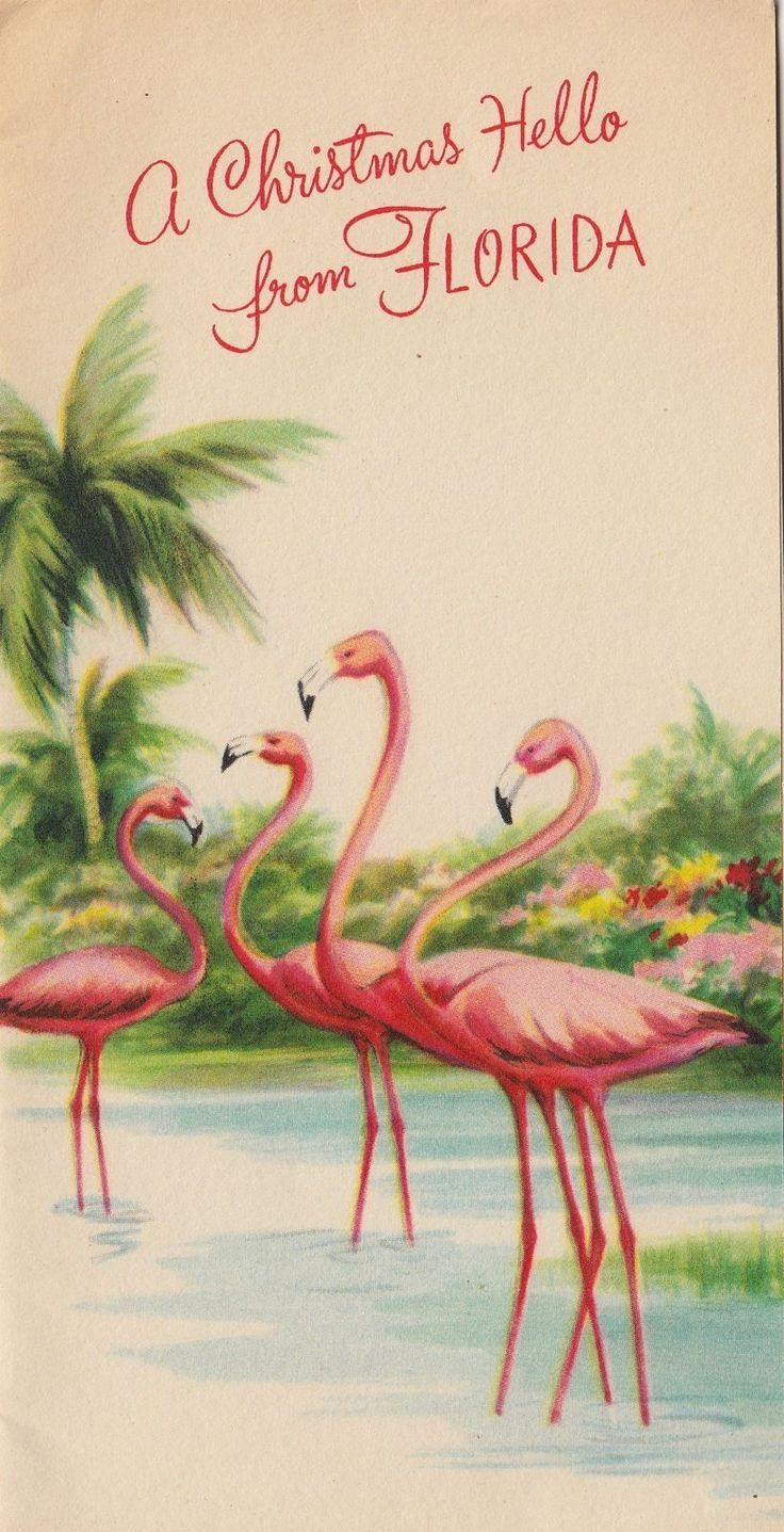 Vintage Greeting Card Christmas FLORIDA 1940s Pink Flamingos v425 ...