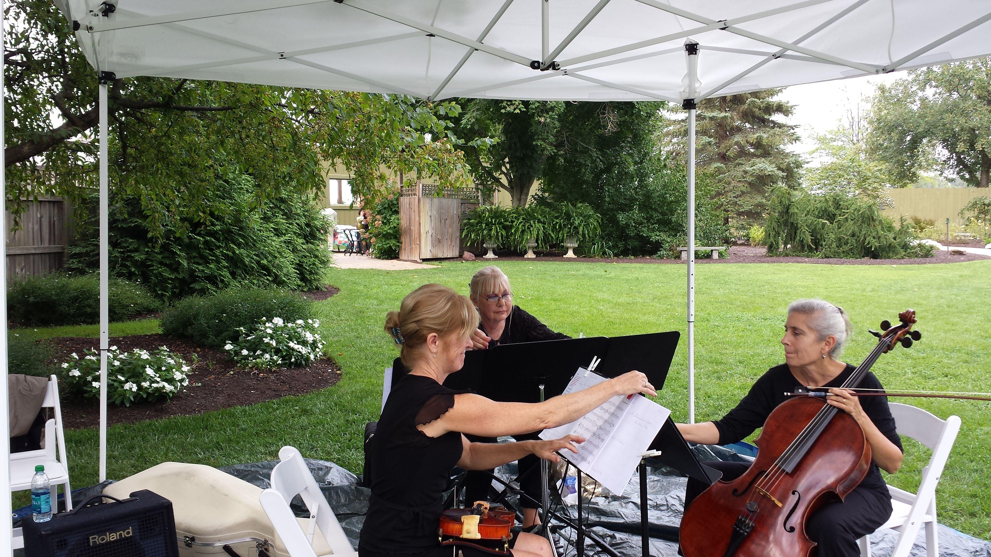 Piano Trio Violin Cello Playing Ceremony At The Beautiful Avon Gardens