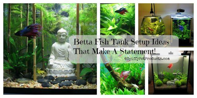 Betta Fish Tank Setup Ideas That Make A Statement Betta Fish Tank Fish Tank Betta Fish