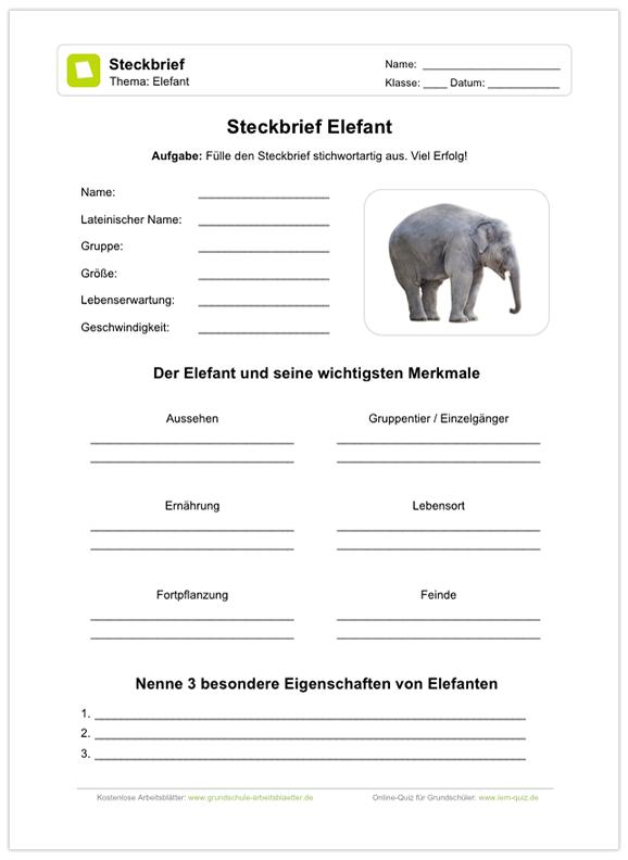 Ein Kostenloses Arbeitsblatt Zum Thema Elenfanten Auf Dem Die