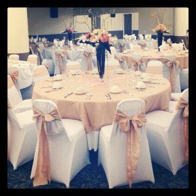 Wedding Rentals Wedding Reception Chairs Wedding Chairs Wedding Rentals