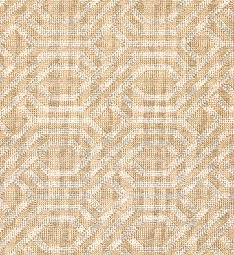 beige carpet texture. Shop Wall To Carpets \u0026 Rugs At ABC Home Beige Carpet Texture