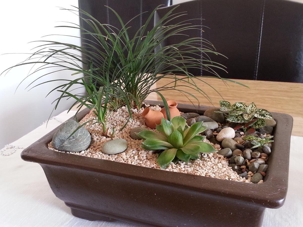 Jardines peque os formatos pellizcados jardins for Jardin zen miniature