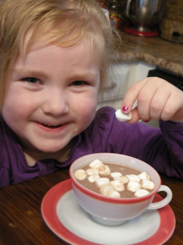 Old Fashioned Stovetop Hot Chocolate ~ http://www.southernplate.com
