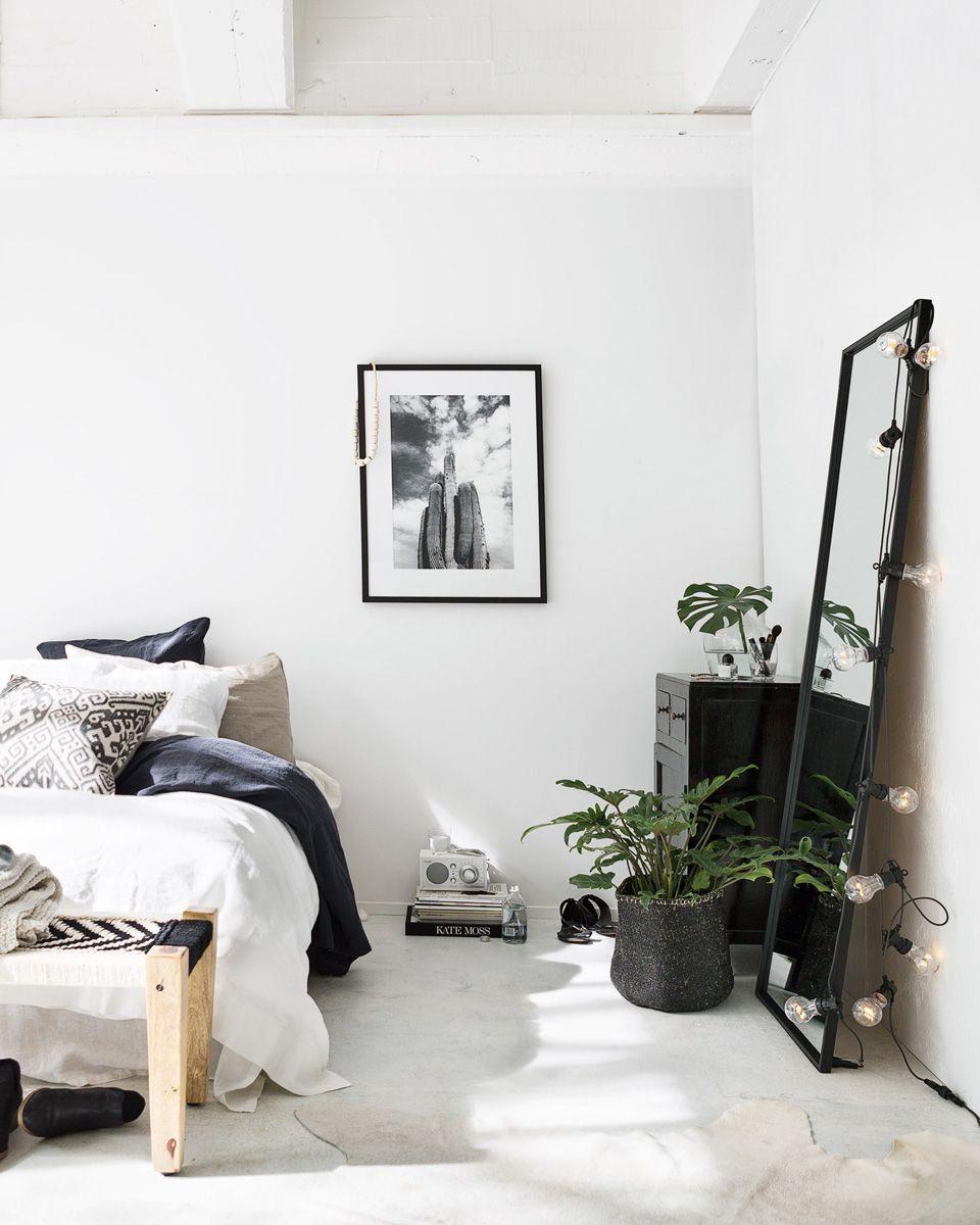 House · Idee Deco Studio Etudiant Plantes