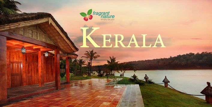 Surround Yourself With Tranquility With 3 Nights In Kerala At Fragrant Nature Hotel And Resorts Inclusive Of Breakfast Hotels And Resorts Sunset Cruise Resort