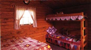BAT CAVE, NC From $45 Per Night For 2. Only 5.5 Miles To Chimney · Camping  CabinsCamping ...