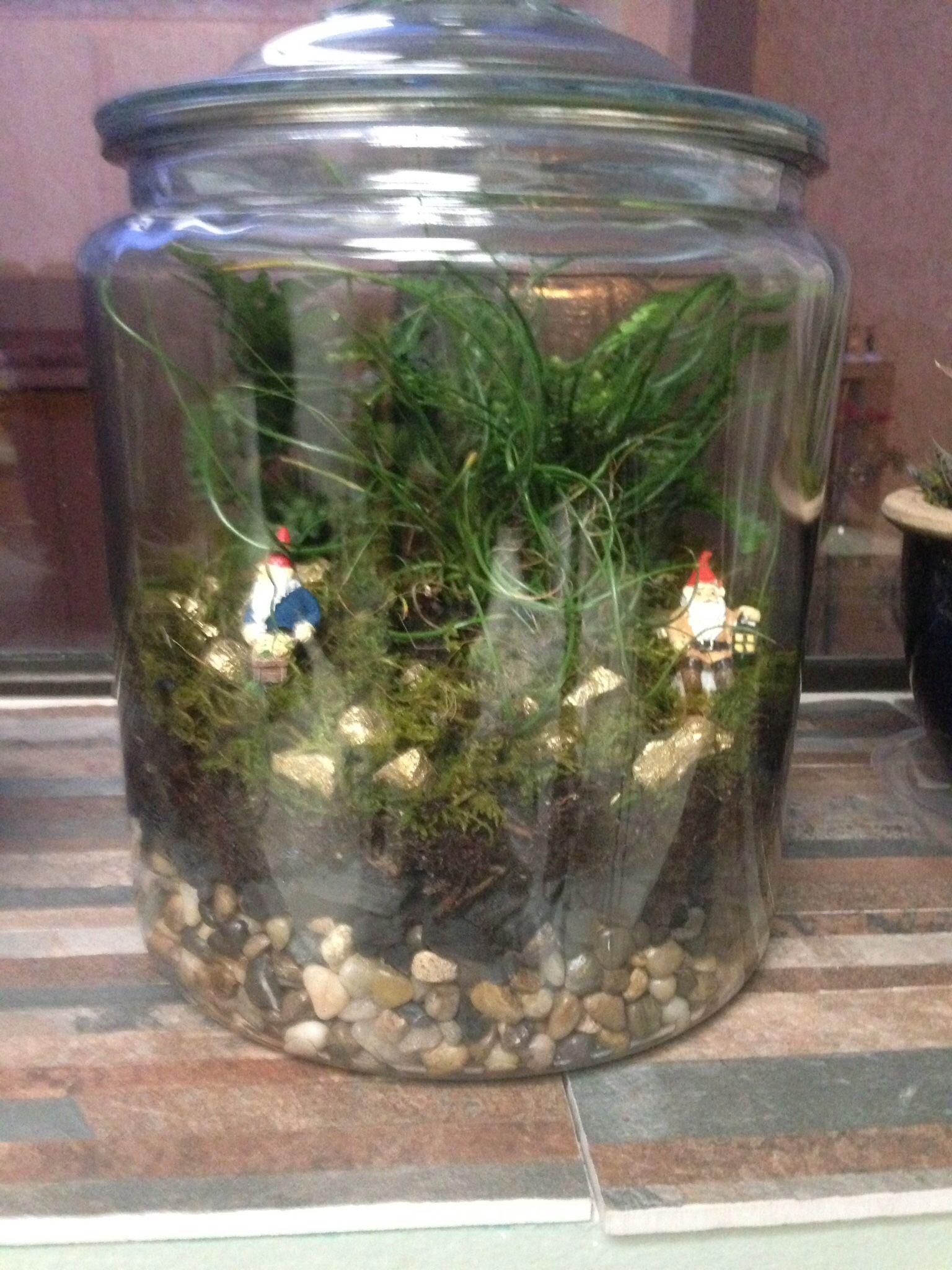 Fish tank my flowers pinterest tanks fish tanks and fish