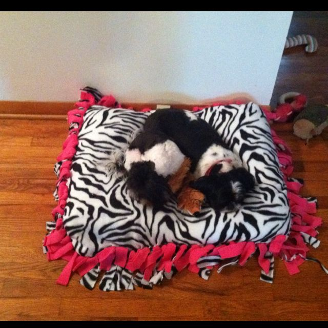 Doggie Bed We Made From Tie Blankets With Images Animal