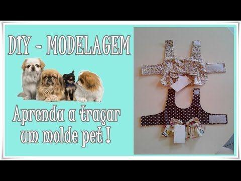 DIY - ROUPAS PET #2 : Aprenda traçar molde pet - YouTube