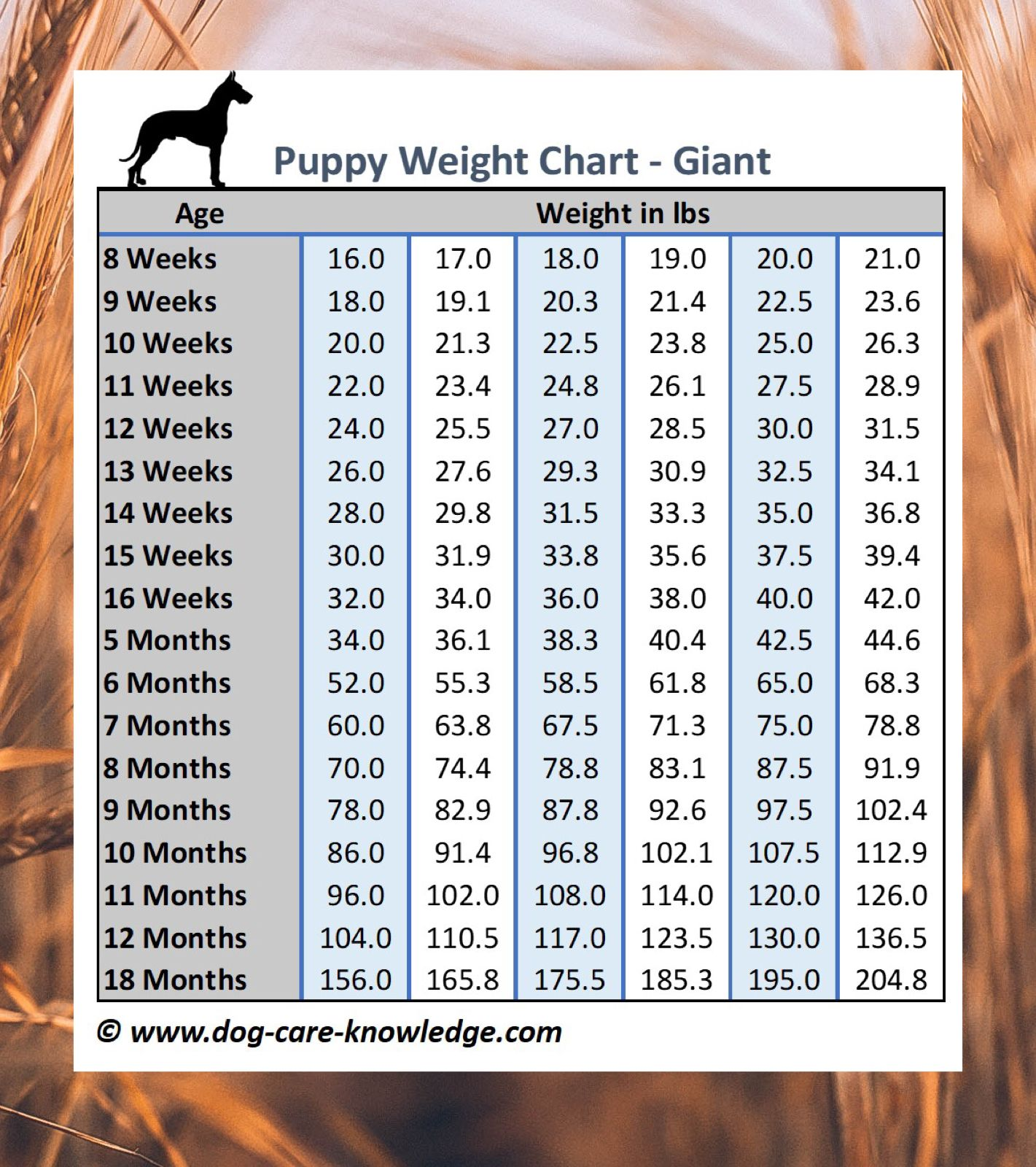 Puppy Weight Chart This Is How Big Your Dog Will Be Weight