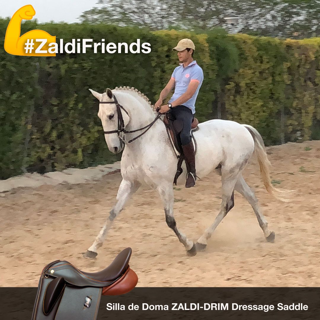 Zaldifriends Saddle Equitacion Doma