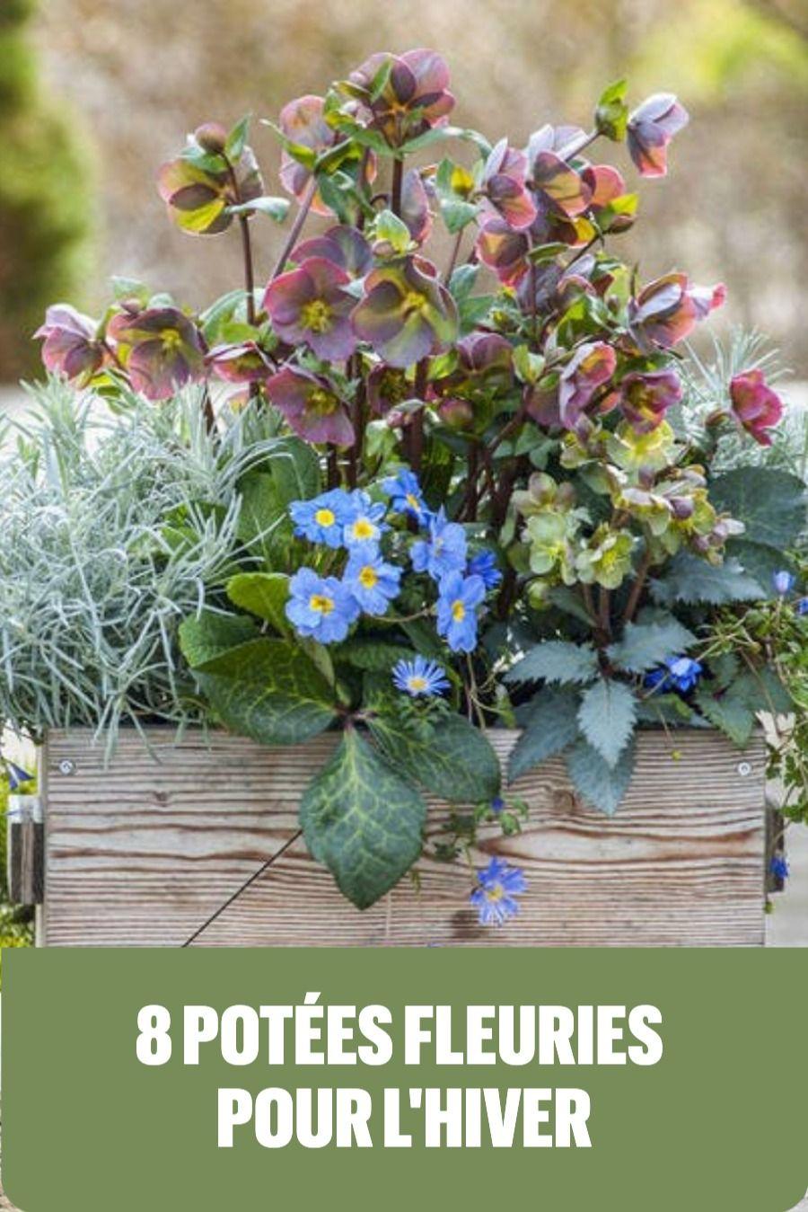 Couleur : A Fleur Escaliers /Étag/ères Bois Fleur Stand Coin Jardin Plante Affichage pour Pots de Fleurs Titulaire Rack /Étag/ère de Jardin Int/érieur ou Ext/érieur pour Balcon//Salon 49x50x100cm