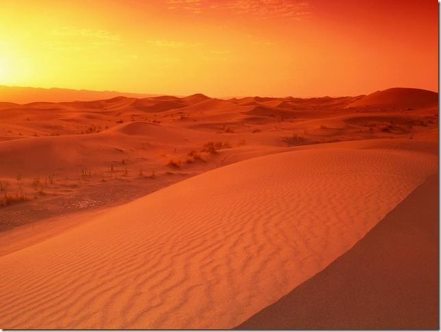 Deserts In Africa The Largest Deserts In The World The - Largest desert in the world