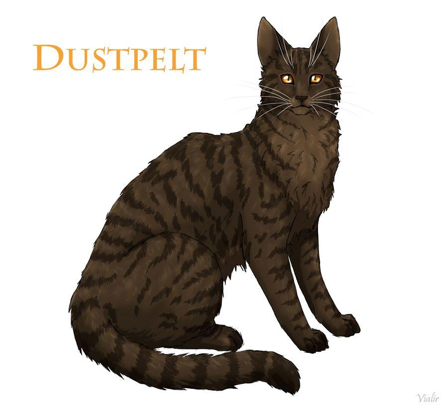 Výsledek obrázku pro warriors cats dustpelt