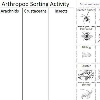 Arthropod Coloring Worksheet Answer Key Halloween Math Worksheets Coloring Worksheets For Kindergarten Math Coloring Worksheets