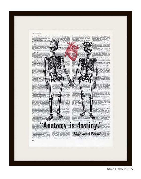 Skeletons In Love Anatomy Is Destiny Freud Quote Images