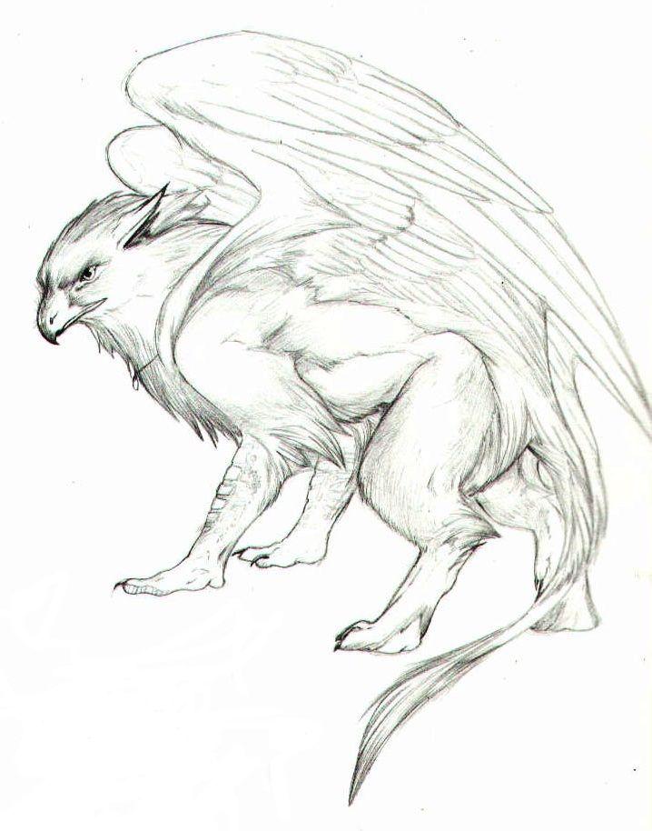 Gryphon Seres Mitologicos Dessin Fantastique Tatouage Griffon Y