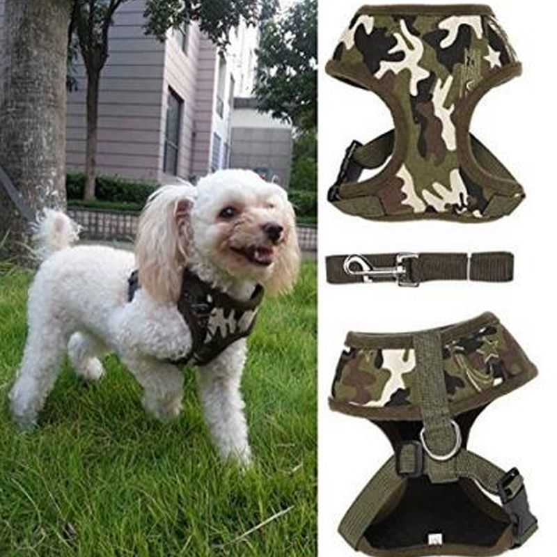 Find More Harnesses Information About Pet Dog Harness With Leads