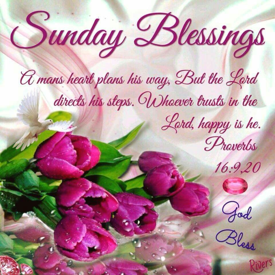 Pin by Rose Menelas on Days of the week Blessed sunday