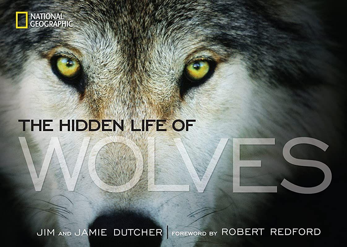 Pdf Free The Hidden Life Of Wolves By Jim Dutcher Jamie Dutcher Et Al