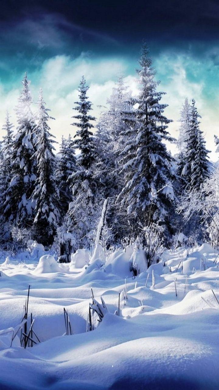 Pin By Francoise Rodriguez On 30 Winter Winter Scenery Winter Scenes Iphone Wallpaper Winter