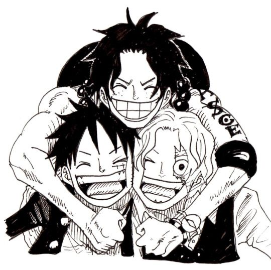 Ace Sabo Luffy Onepiece Asl Cute Dbrothers Pirate Mugiwara