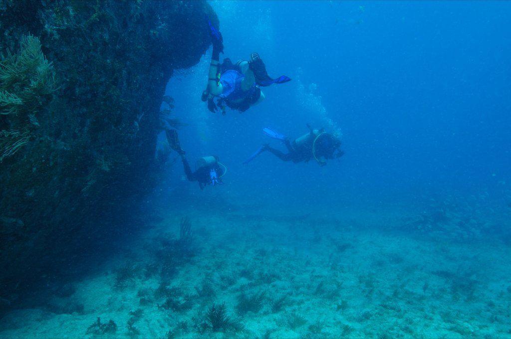Buceo submarino alrrededor de un naufragio bajo las aguas de Isla Larga,estado Carabobo,Venezuela.